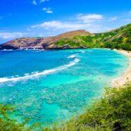 Aloha to a Treasured Memory